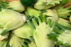 Fennel at the open air market Royalty Free Stock Images