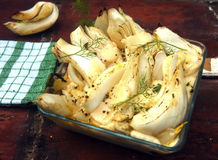 Fennel parmesan gratin. With dill stock images