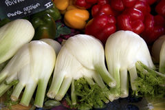 Fennel and peppers Stock Photography