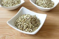 Fennel. A picture of some food spices or ingredients: fennel Stock Photo