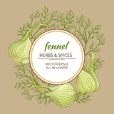 Fennel vector frame. Fennel plant vector frame on color background Stock Image