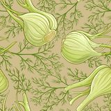 Fennel vector pattern. Fennel plant vector pattern on color background Stock Photos