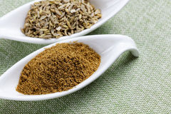 Fennel powder and seeds on texture background Stock Images