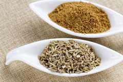 Fennel powder and seeds on texture background Royalty Free Stock Photos