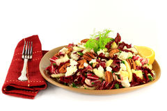 Fennel and Radicchio gourmet salad Royalty Free Stock Images
