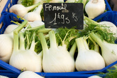 Fennel for sale Stock Photos