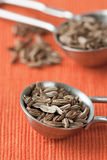 Fennel Seed Royalty Free Stock Photo