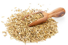 Fennel seed heap with wooden scoop Royalty Free Stock Image
