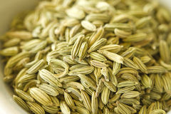 Fennel Seeds Royalty Free Stock Images