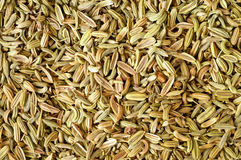 Fennel seeds background Royalty Free Stock Photos