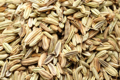 Fennel Seeds bakdround Royalty Free Stock Photo