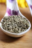 Fennel seeds. Beautiful shot of fennel seeds in bowl Royalty Free Stock Photo