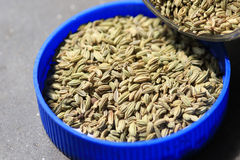 Fennel seeds. Beautiful shot of fennel seeds in container Royalty Free Stock Photo