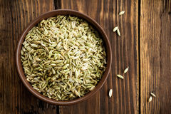 Fennel seeds Stock Image