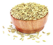 Fennel seeds Royalty Free Stock Photos