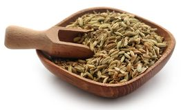 Fennel seeds. In bowl over white background Royalty Free Stock Image