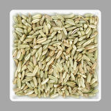 Fennel seeds in a bowl Royalty Free Stock Photo