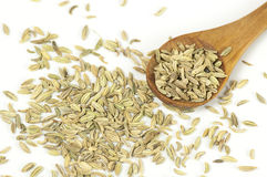 Fennel seeds close up Stock Photos