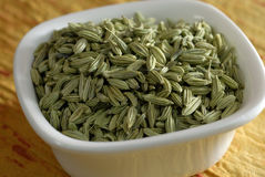 Fennel Seeds Dried as condiments Royalty Free Stock Image