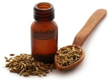 Fennel seeds with essential oil in a bottle Royalty Free Stock Images
