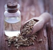 Fennel seeds with essential oil. In a bottle on natural surface Stock Photos