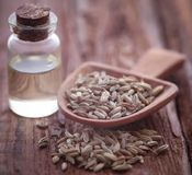 Fennel seeds with essential oil. In a bottle on natural surface Royalty Free Stock Photos