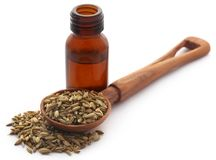 Fennel seeds with essential oil. In a bottle over white background Stock Photos