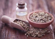 Fennel seeds with essential oil. In a bottle on natural surface Royalty Free Stock Photo