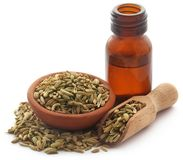 Fennel seeds with essential oil. In a bottle over white background Royalty Free Stock Image