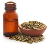 Fennel seeds with essential oil. In a bottle over white background Stock Images