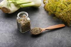 Fennel seeds. In glass jar and spoon on grey background Royalty Free Stock Image