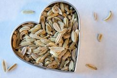 Fennel seeds. In a heart shape Stock Images