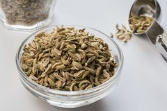 Fennel Seeds. In an ingredient bowl Stock Photography