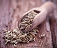 Fennel seeds. In a scoop on wooden surface Stock Images