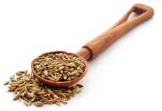 Fennel seeds. In wooden scoop over white background Royalty Free Stock Photo