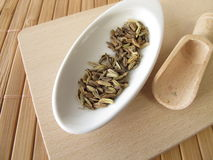 Fennel seeds, Foeniculi fructus. In herbalism Royalty Free Stock Images