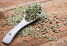 Fennel seeds. Fennel or fennel seeds are highly aromatic and flavorful herb with culinary and medicinal uses . It is used as a spice and possesses a sweet taste Royalty Free Stock Photo