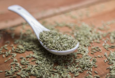 Fennel seeds. Fennel or fennel seeds are highly aromatic and flavorful herb with culinary and medicinal uses . It is used as a spice and possesses a sweet taste Stock Photo