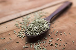 Fennel seeds. Fennel or fennel seeds are highly aromatic and flavorful herb with culinary and medicinal uses . It is used as a spice and possesses a sweet taste Royalty Free Stock Photography