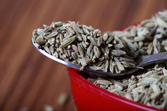 Fennel seeds macro Royalty Free Stock Photo