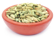 Fennel seeds over white background Royalty Free Stock Images