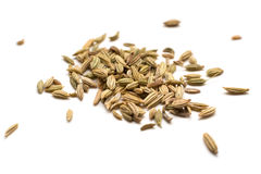 Fennel seeds. Pile of Fennel seeds isolated on white background Stock Photos