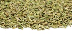 The fennel seeds scattered Stock Photography