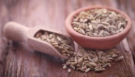 Fennel seeds. In a scoop on natural surface Stock Images