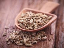Fennel seeds. In a scoop on natural surface Stock Image