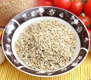 Fennel seeds. Some dried fennel seeds in a bowl Royalty Free Stock Images