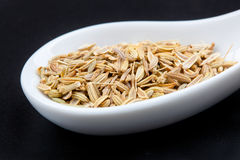 Fennel seeds in the spoon Royalty Free Stock Photo