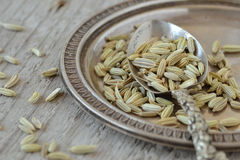 Fennel seeds. With spoon and plate Stock Photo