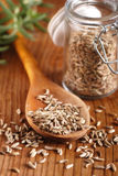 Fennel seeds in the spoon. Fennel seeds in wooden spoon Stock Photography