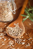 Fennel seeds in the spoon Royalty Free Stock Images
